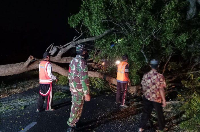Wujud Peduli Dan Kebersamaan Babinsa Pos Kartoharjo Bersama Warga Evakuasi Pohon Tumbang